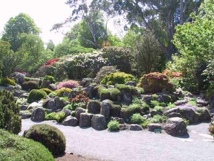 Day 15 contd october 31 christchurch for Landscape gardeners christchurch